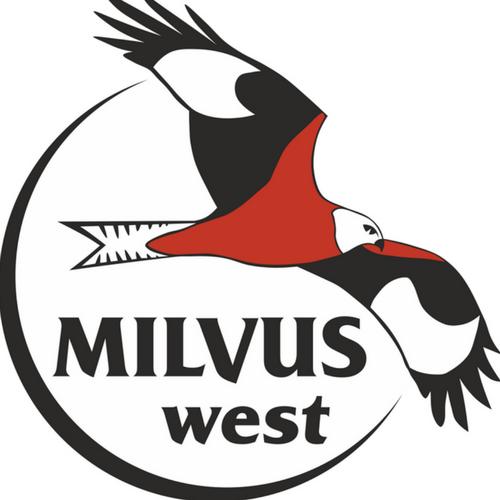 Grupul Milvus